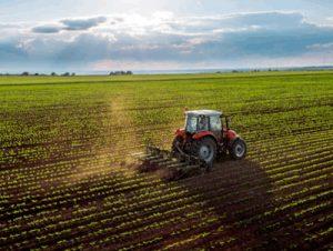 ¿En qué zonas de España se producen más verduras?