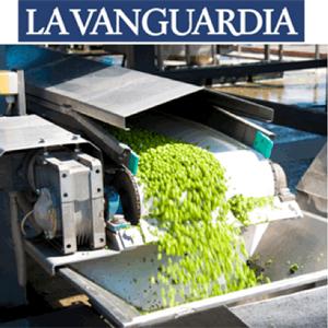 El mercado español de verduras congeladas cerró 2017 con ventas de 775 millones